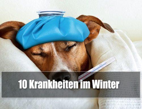 Die 10 häufigsten Krankheiten im Winter