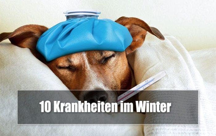 10 Krankheiten die es im Winter gibt